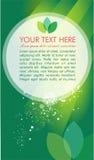 Groene vektorbrochure Stock Foto