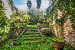 Groene verlaten tuin in Toscanië stock foto's