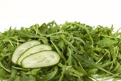 Groene verse komkommers Stock Fotografie