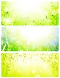 Groene verse zonnige banners Royalty-vrije Stock Afbeeldingen