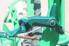 Groene vinger pincher - een detail van een uitstekend landbouwbedrijf voert tegen vage achtergrond uit royalty-vrije stock fotografie