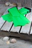 Groene vinnen op het zandige strand royalty-vrije stock foto's