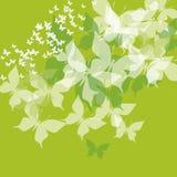 Groene vlinder Royalty-vrije Stock Afbeelding