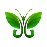 Groene vlinder, bladvorm, vectorillustratie Stock Foto
