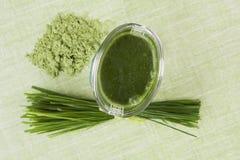 Groene voedselsupplementen. Stock Fotografie