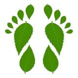 Groene voetafdruk Stock Foto