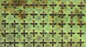 Groene vorm en roest op het dikke ijzer royalty-vrije stock foto