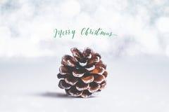 Groene Vrolijke Kerstmis en fonkelende ster met bruine denneappel  stock foto