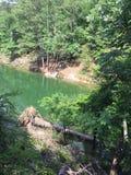 Groene Wateren stock afbeeldingen