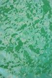Groene waterspiegel Stock Foto