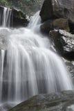 Groene watervallen, duidelijk, mooi, installaties, mos, rotsen Stock Fotografie