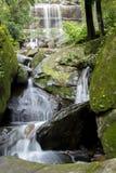 Groene watervallen, duidelijk, mooi, installaties, mos, rotsen Stock Foto