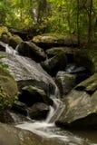 Groene watervallen, duidelijk, mooi, installaties, mos, rotsen Royalty-vrije Stock Afbeelding
