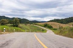Groene weg Stock Afbeeldingen