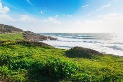 Groene weide door het overzees in Sardinige stock afbeelding