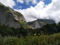 Groene weide en bergenhemel stock foto's