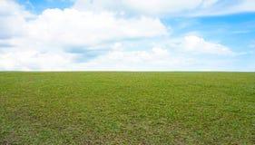 Groene weide en blauwe hemel Royalty-vrije Stock Foto