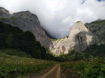 Groene weide en de wolken van de bergenhemel en bloemen royalty-vrije stock foto's
