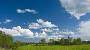 Groene weide en witte wolken II Royalty-vrije Stock Afbeelding