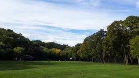 Groene weide in het midden van het park, bladbomen, Hoog Park, Toronto, Canada royalty-vrije stock afbeeldingen