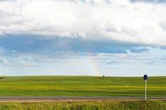 Groene weide onder blauwe bewolkte hemel met een regenboog na regen Royalty-vrije Stock Foto