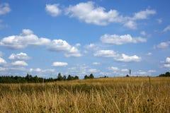 Groene weide onder blauwe hemel met wolken van wit Stock Foto