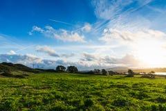 Groene weide onder een glanzende zon bij zonsondergang royalty-vrije stock afbeeldingen