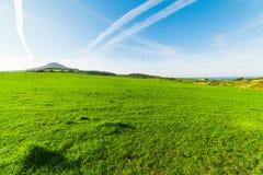 Groene weide op een duidelijke dag in Sardinige stock foto