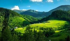 Groene weiden en bergen stock foto's