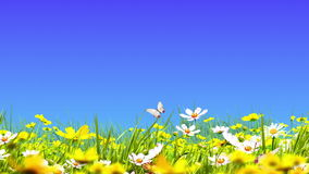 Groene weiden en bloemen royalty-vrije illustratie