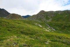 Groene weiden in vallei van 7 meren De Bergen van Altai siberi? Rusland stock foto