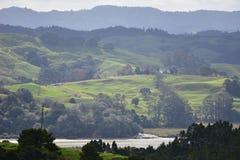 Groene weilanden op heuvels in nevel stock fotografie