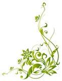 Groene wijnstokken en bloem vector illustratie