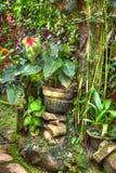 Groene wildernis Royalty-vrije Stock Afbeeldingen