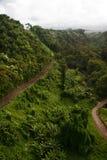 Groene wildernis van Hawaï stock foto's