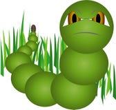 Groene worm Royalty-vrije Stock Foto's