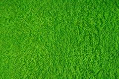 Groene zachte achtergrond Stock Foto's