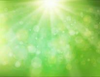 Groene zonnestraalachtergrond Stock Foto