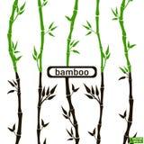 Groene zwarte van het bamboe de naadloze patroon, Stock Afbeeldingen