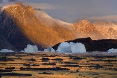 Groenland - de Fjord van het Noordwesten in Scoresbysund Royalty-vrije Stock Afbeeldingen