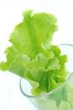 Groente in glas Royalty-vrije Stock Afbeelding