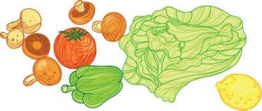 Groente met de Illustratie van de Krabbelstijl Stock Fotografie