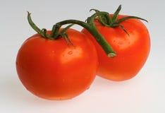 groenten Royalty-vrije Stock Afbeelding