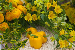 Groenten en bloemen Stock Afbeelding