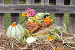 Groenten en bloemen van tuin op stro met oude omheining op de achtergrond Stock Afbeelding