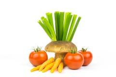 Groenten en boleet 2 Royalty-vrije Stock Afbeelding