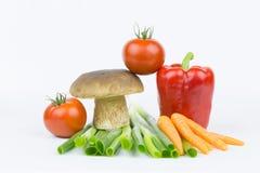 Groenten en boleet Stock Afbeelding