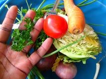 Groenten en culinair art. Stock Foto