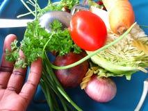 Groenten en culinair art. Royalty-vrije Stock Afbeeldingen
