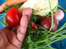 Groenten en culinair art. Stock Afbeeldingen